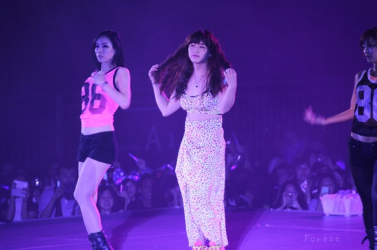 130615-ss5hkd1-forest-09