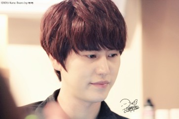 SJ (4)