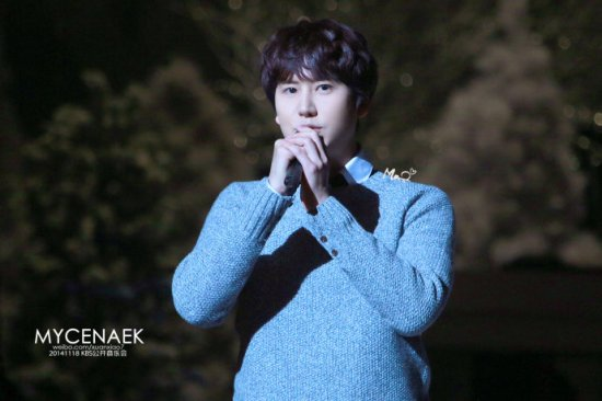 141118 kbs open concert kyuhyun003